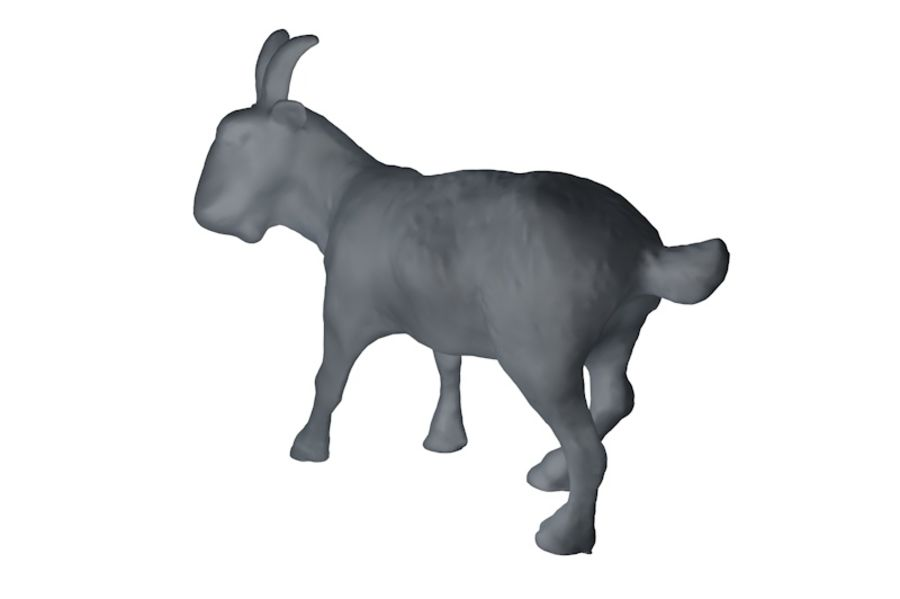 Detailed Goat Base Mesh royalty-free 3d model - Preview no. 3
