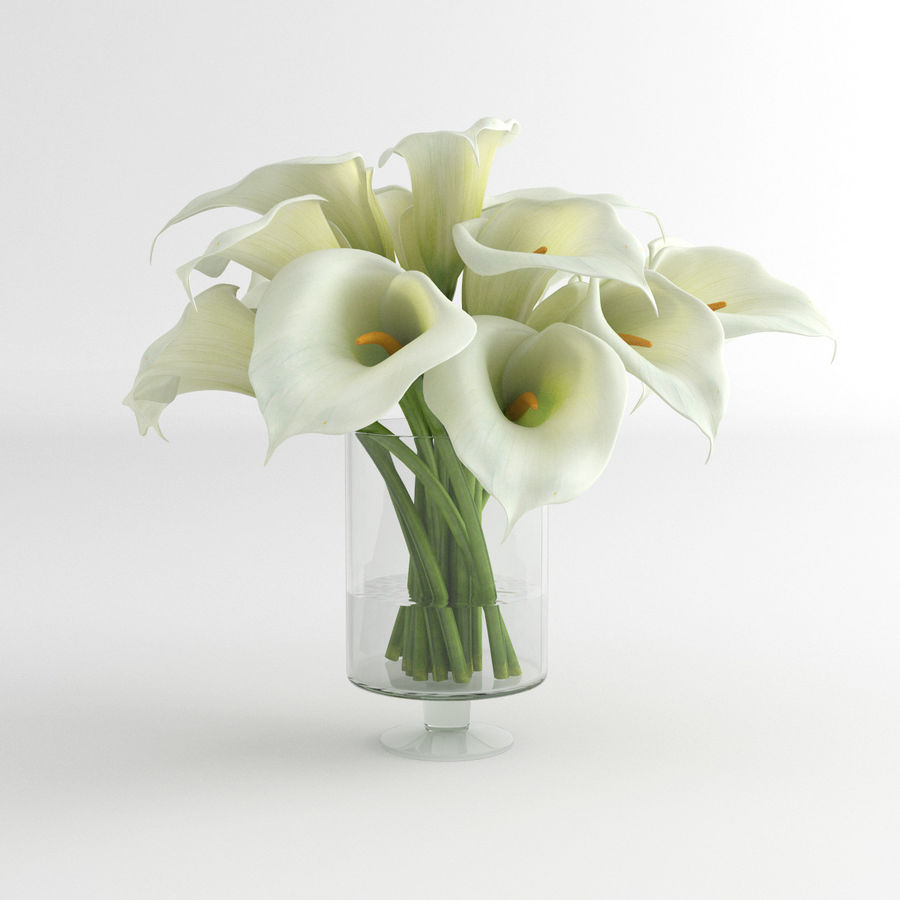 Calla Lily blomma glas vas 01 royalty-free 3d model - Preview no. 5