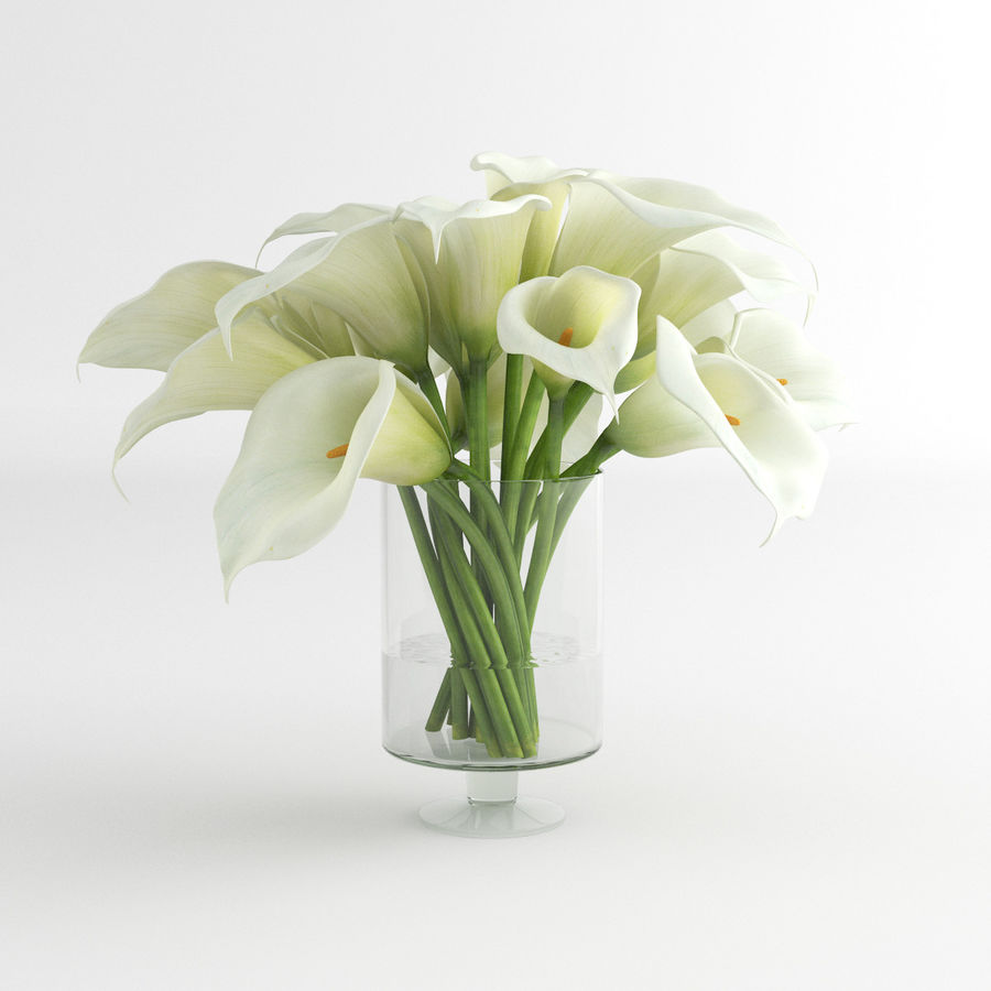 Calla Lily blomma glas vas 01 royalty-free 3d model - Preview no. 4