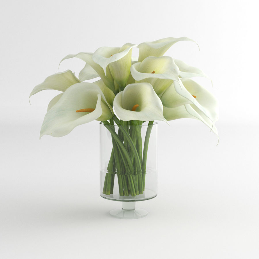 Calla Lily blomma glas vas 01 royalty-free 3d model - Preview no. 2