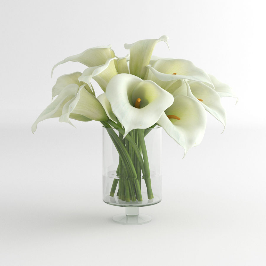 Calla Lily blomma glas vas 01 royalty-free 3d model - Preview no. 1