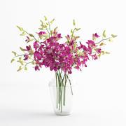 Orchidee dentrobium bloemenglazen vaas 01 3d model