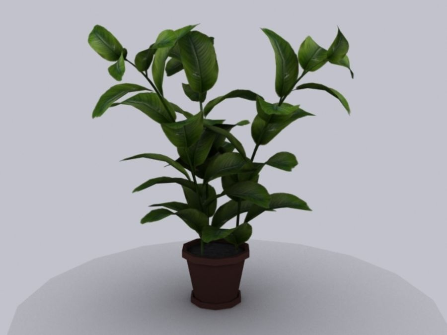 Topf mit Baum royalty-free 3d model - Preview no. 2