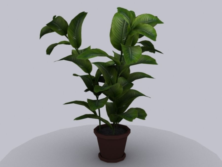 Topf mit Baum royalty-free 3d model - Preview no. 1