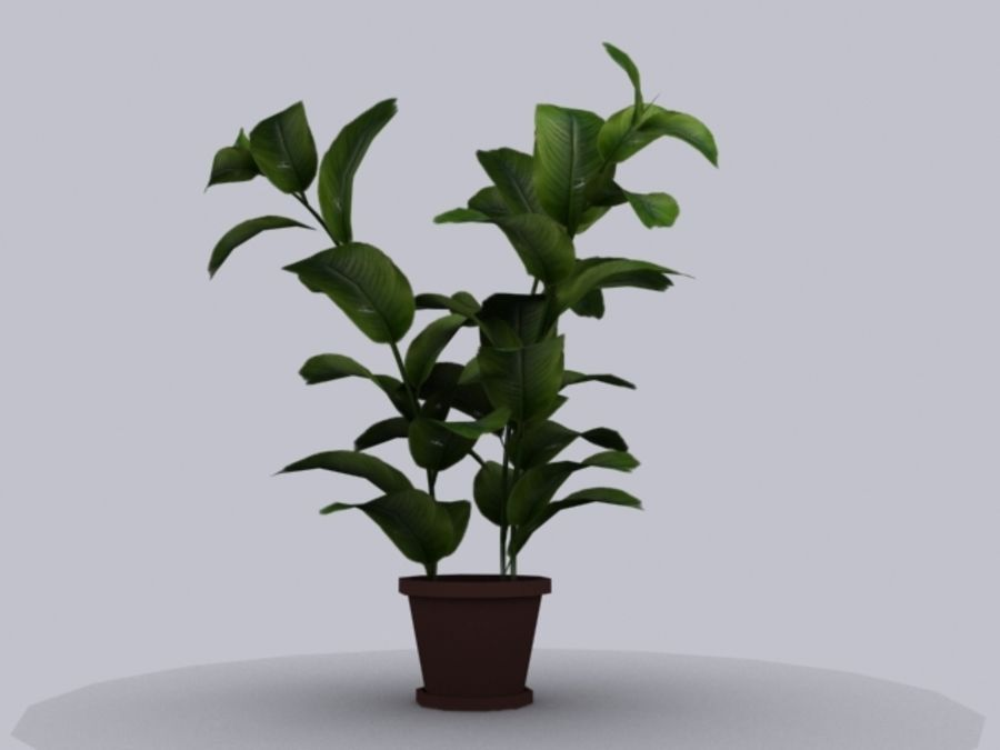 Topf mit Baum royalty-free 3d model - Preview no. 3