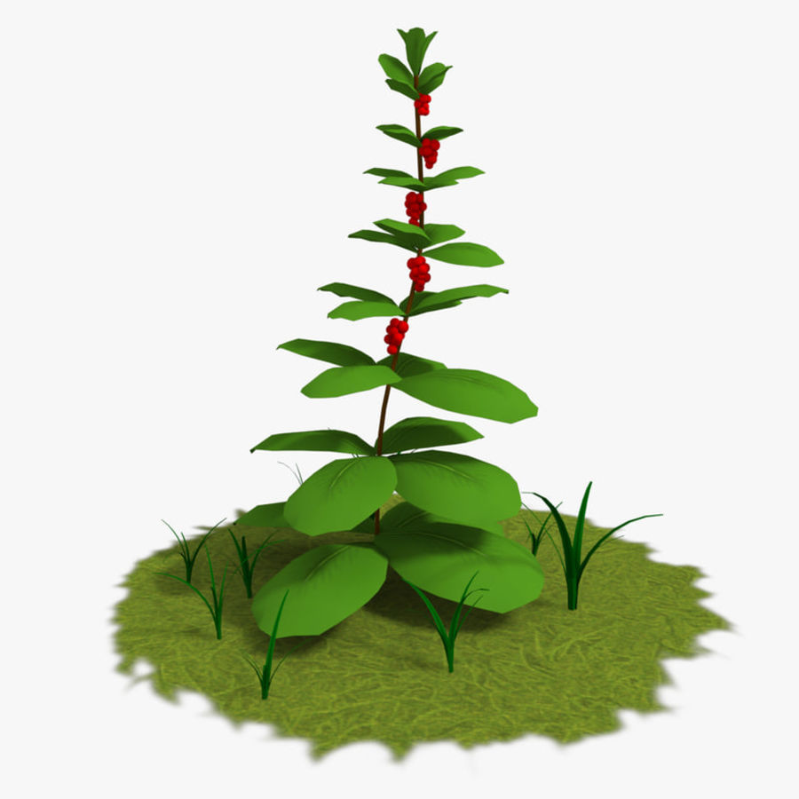 Plante royalty-free 3d model - Preview no. 1