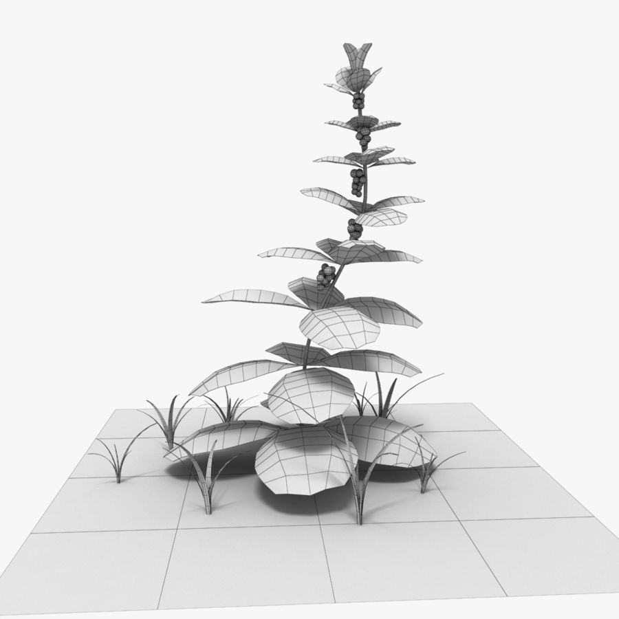 Plante royalty-free 3d model - Preview no. 6