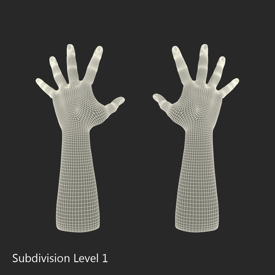 Man Hands 2 Pose 4 royalty-free 3d model - Preview no. 13