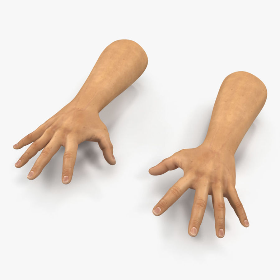 Man Hands 2 Pose 4 royalty-free 3d model - Preview no. 1