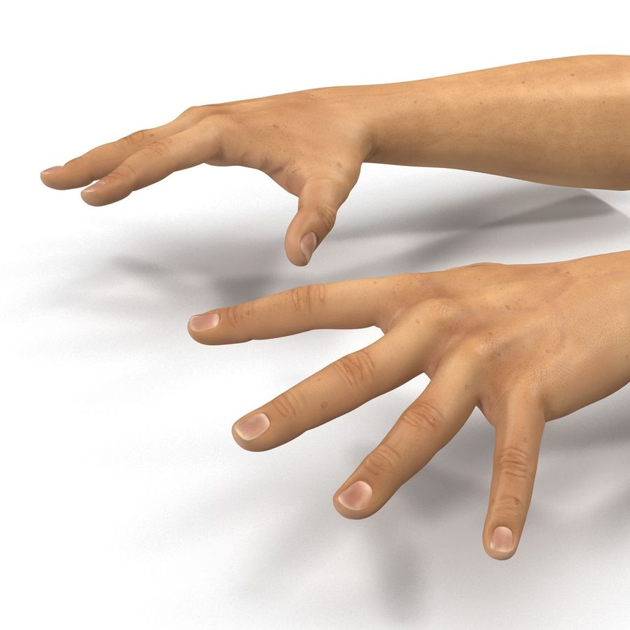 Man Hands 2 Pose 4 royalty-free 3d model - Preview no. 11