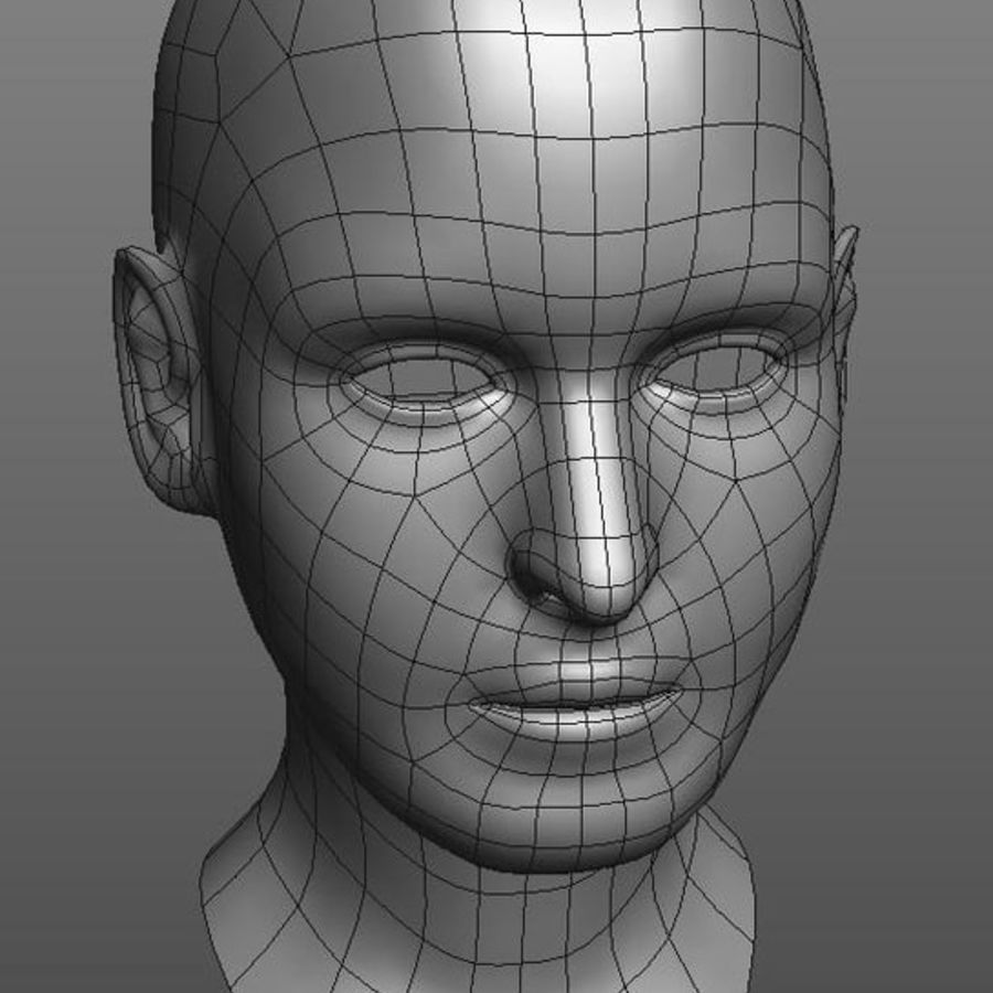 head basemesh royalty-free 3d model - Preview no. 4