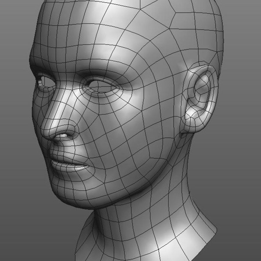 head basemesh royalty-free 3d model - Preview no. 1