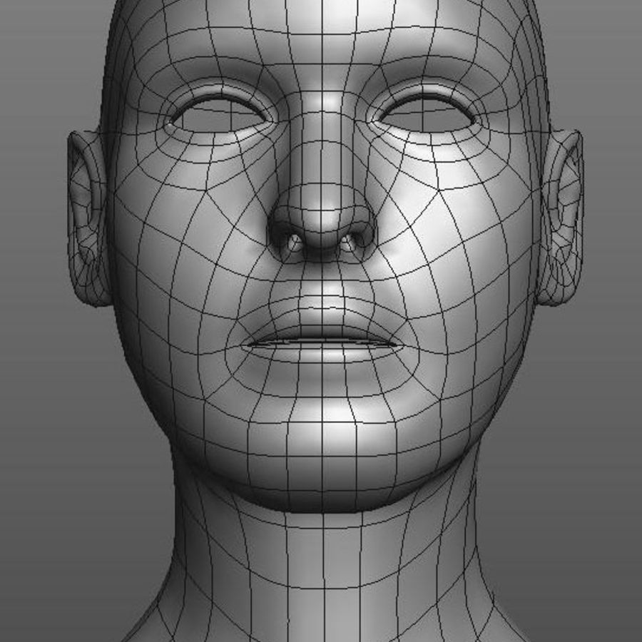 head basemesh royalty-free 3d model - Preview no. 5
