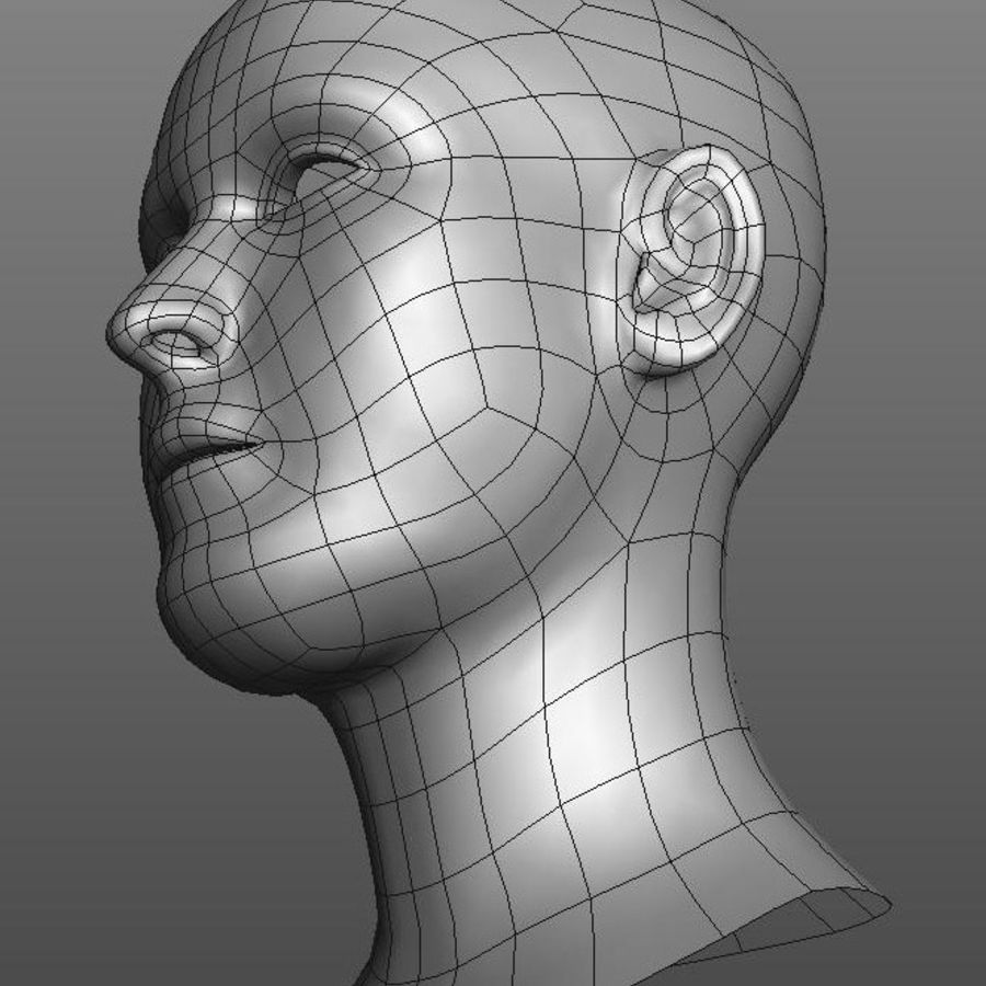 head basemesh royalty-free 3d model - Preview no. 3