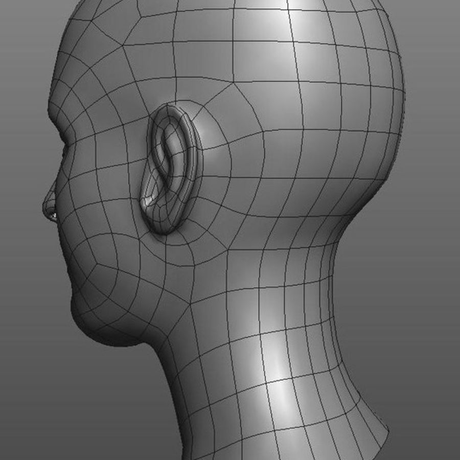 head basemesh royalty-free 3d model - Preview no. 2