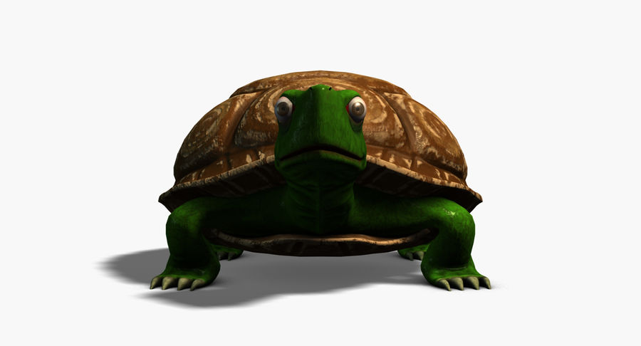 Cartoon Turtle royalty-free 3d model - Preview no. 3