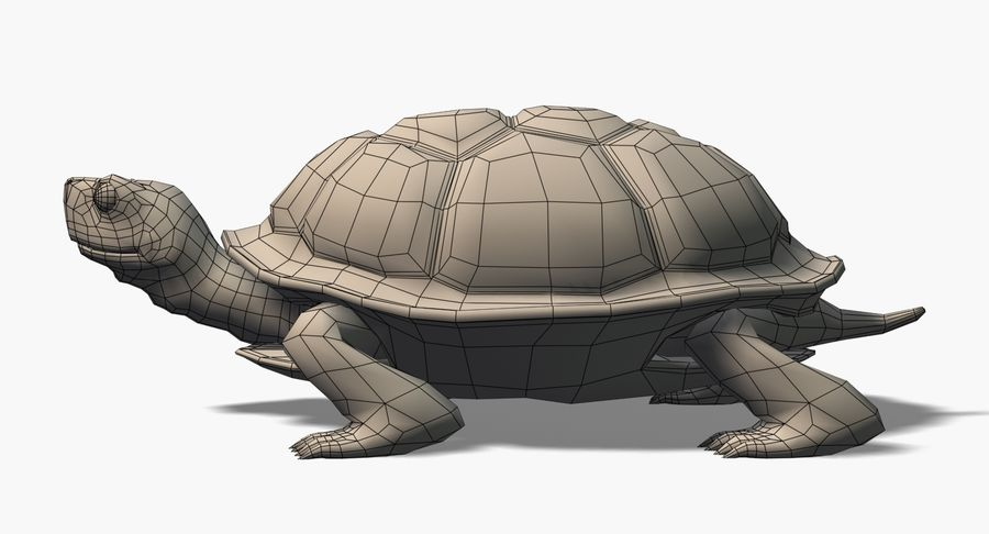 Cartoon Turtle royalty-free 3d model - Preview no. 9