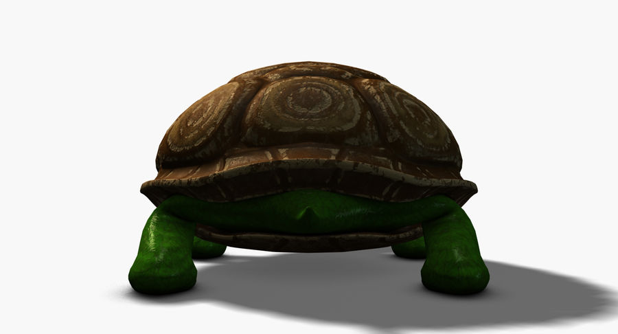 Cartoon Turtle royalty-free 3d model - Preview no. 5