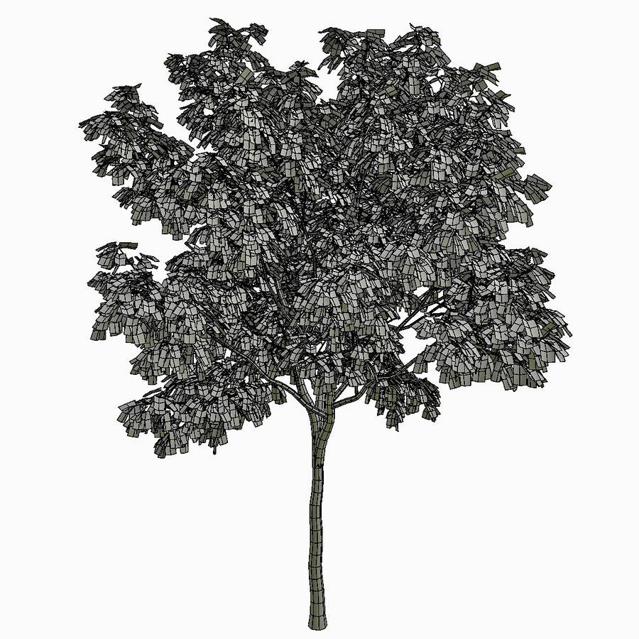 Árvore # 3 royalty-free 3d model - Preview no. 6