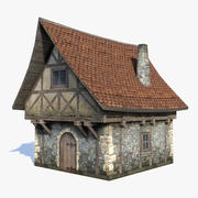 Fantasy House 05 LOD 3d model