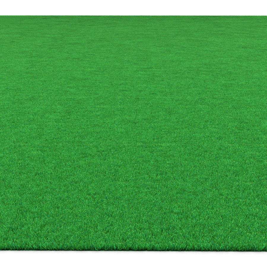 Kentucky Bluegrass Grass royalty-free 3d model - Preview no. 6