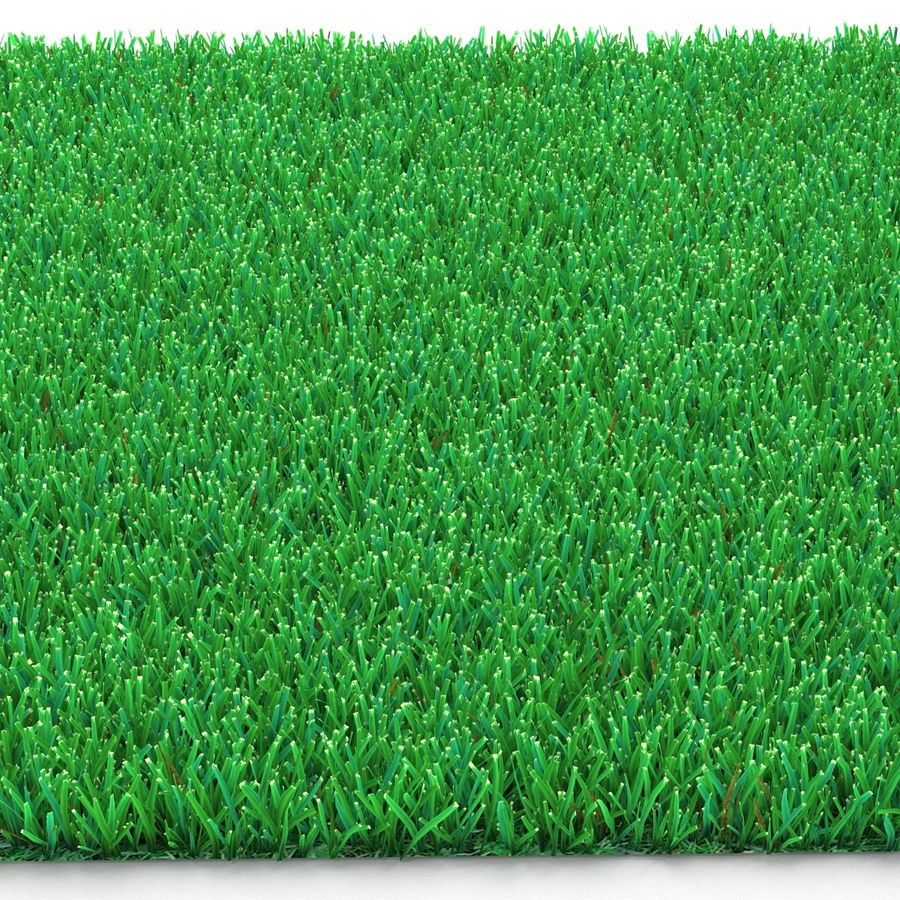 Kentucky Bluegrass Grass royalty-free 3d model - Preview no. 8