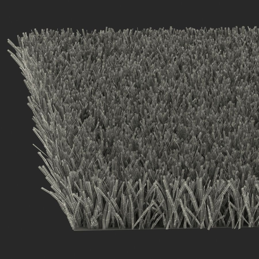 Kentucky Bluegrass Grass royalty-free 3d model - Preview no. 21