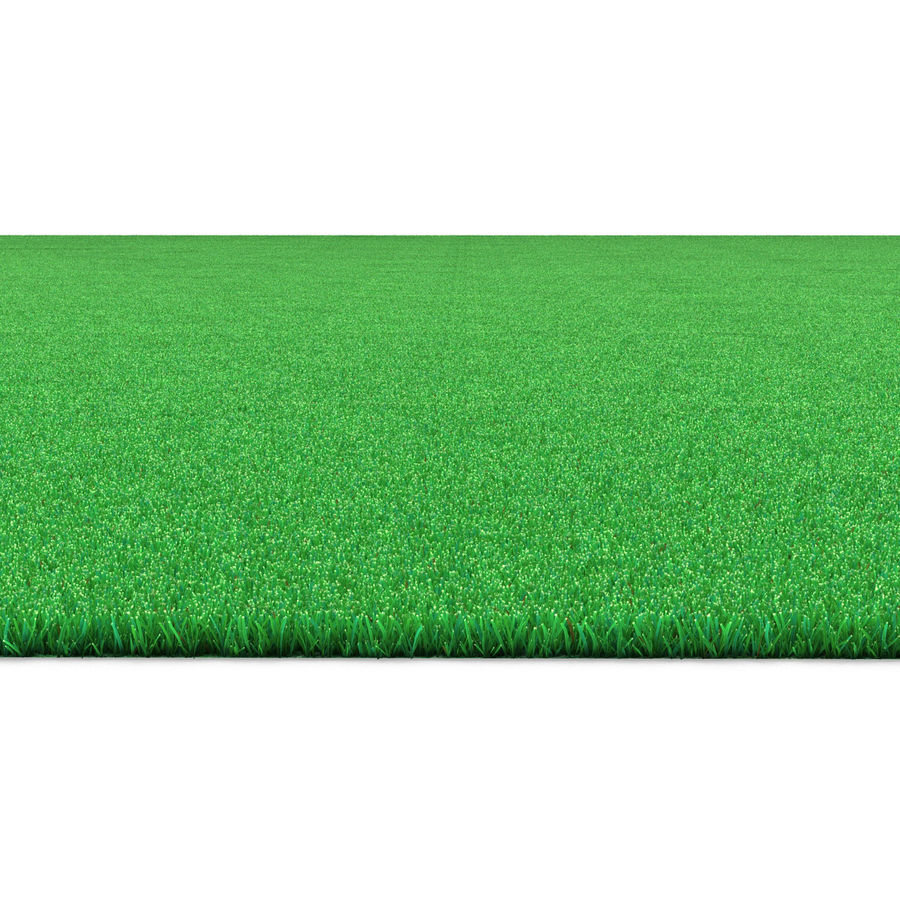 Kentucky Bluegrass Çimen royalty-free 3d model - Preview no. 7