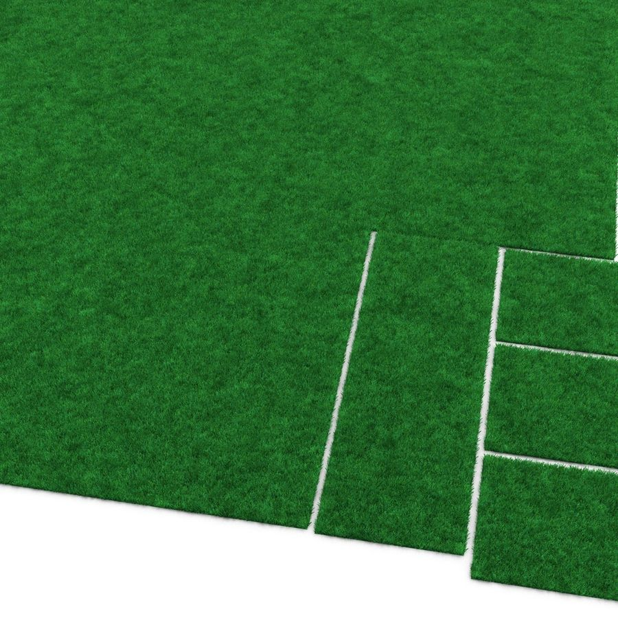 Kentucky Bluegrass Çimen royalty-free 3d model - Preview no. 11