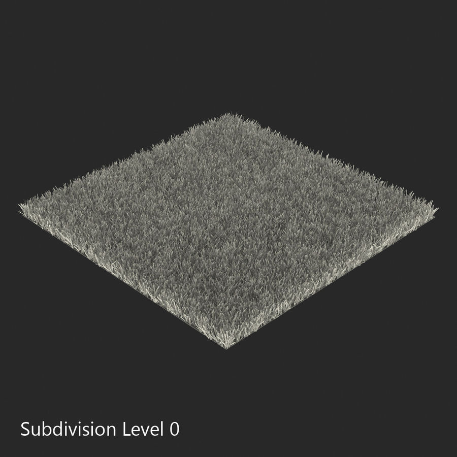 Kentucky Bluegrass Grass royalty-free 3d model - Preview no. 12
