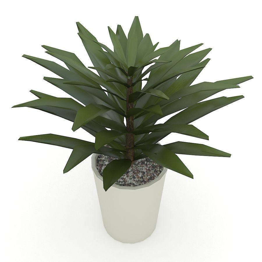 Plant royalty-free 3d model - Preview no. 2