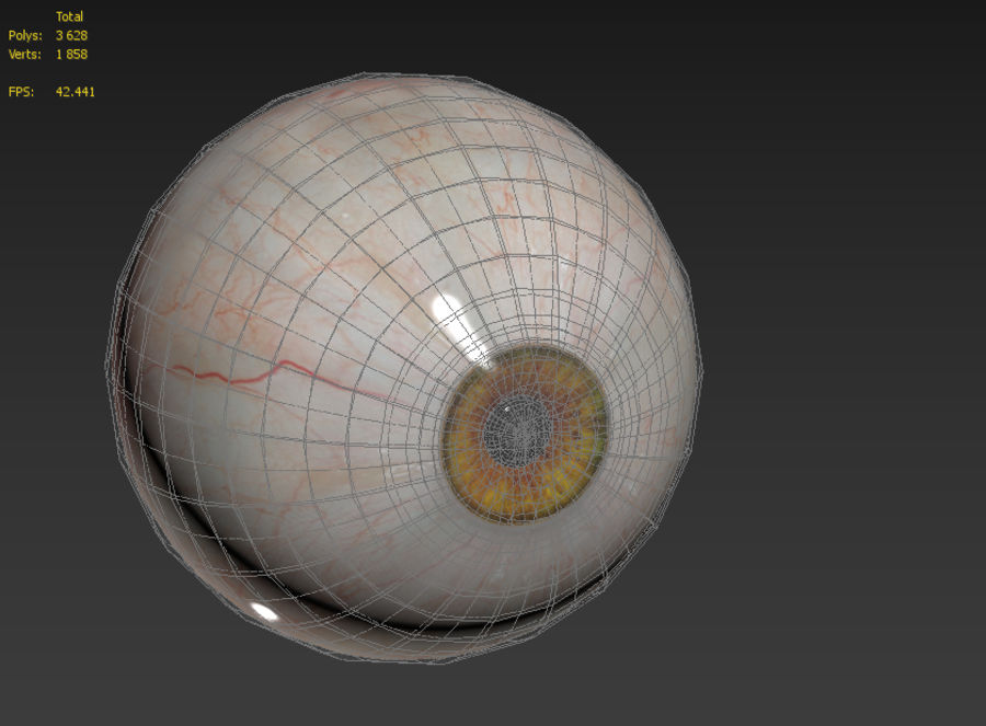Realistic Human Eye Bundle royalty-free 3d model - Preview no. 28