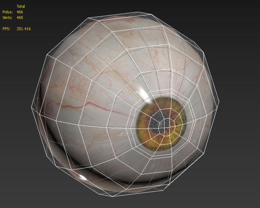 Realistic Human Eye Bundle royalty-free 3d model - Preview no. 27