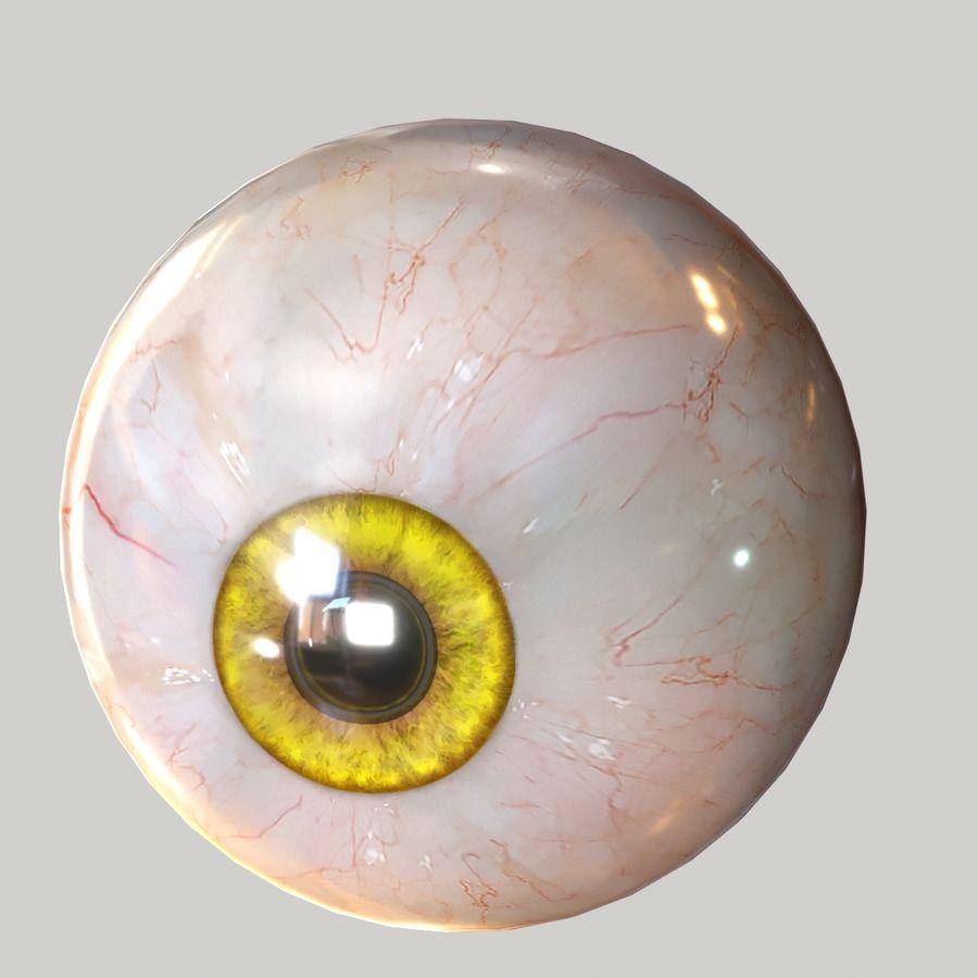 Realistic Human Eye Bundle royalty-free 3d model - Preview no. 19