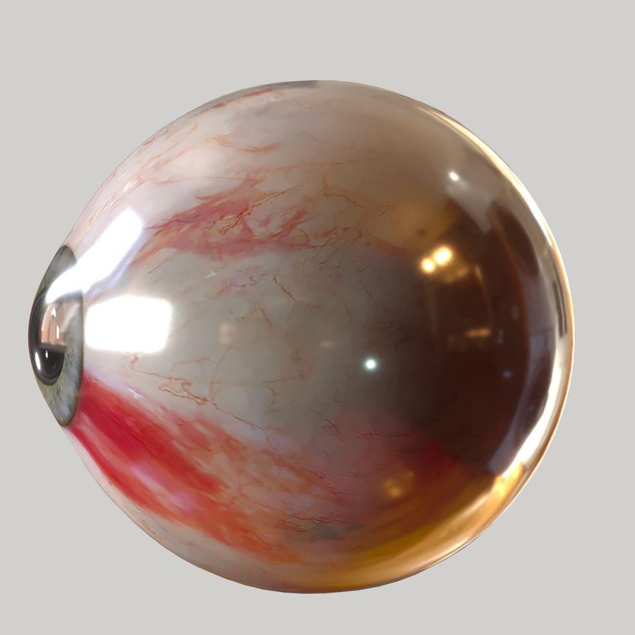 Realistic Human Eye Bundle royalty-free 3d model - Preview no. 10