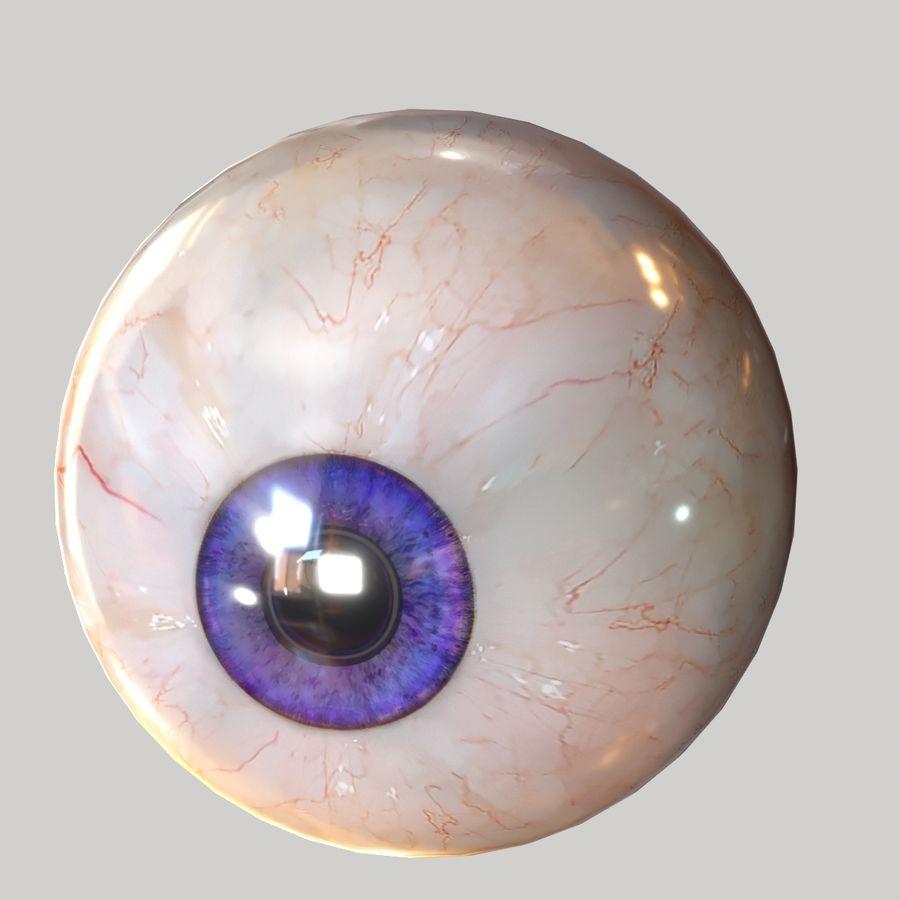 Realistic Human Eye Bundle royalty-free 3d model - Preview no. 18