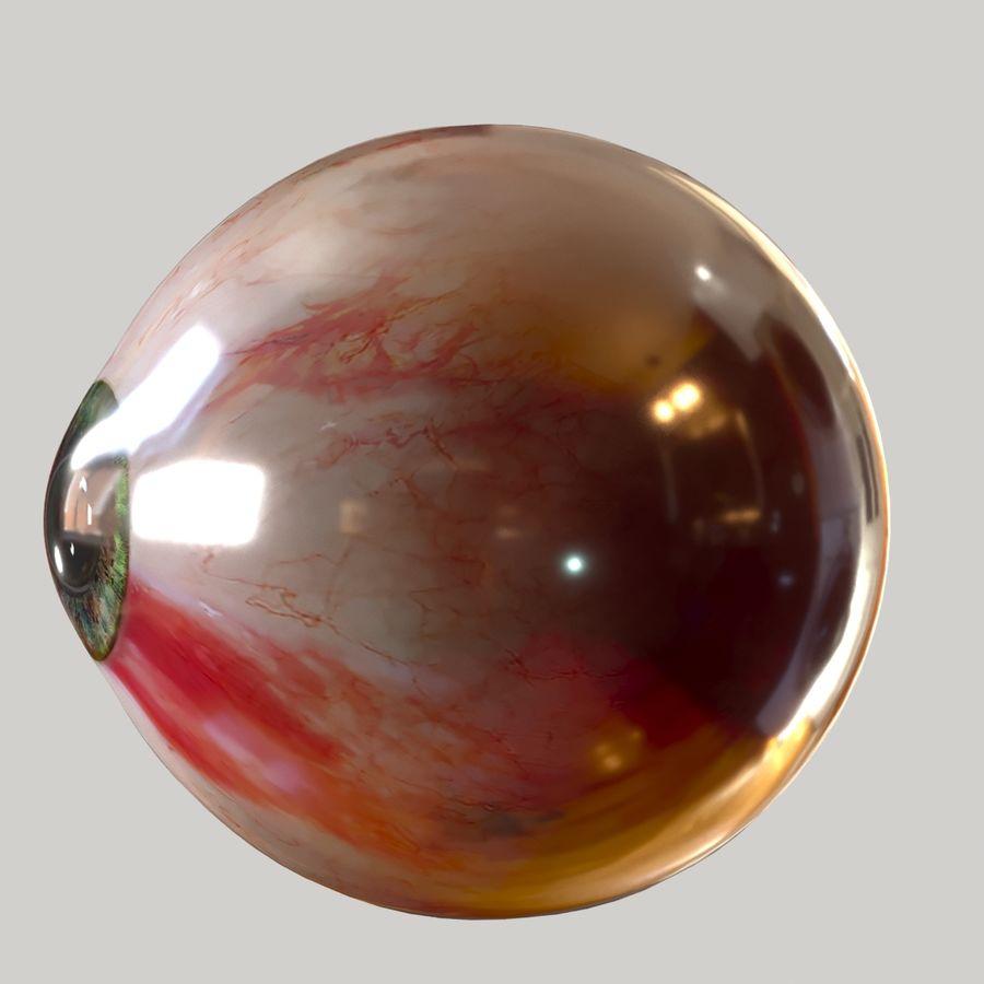 Realistic Human Eye Bundle royalty-free 3d model - Preview no. 15