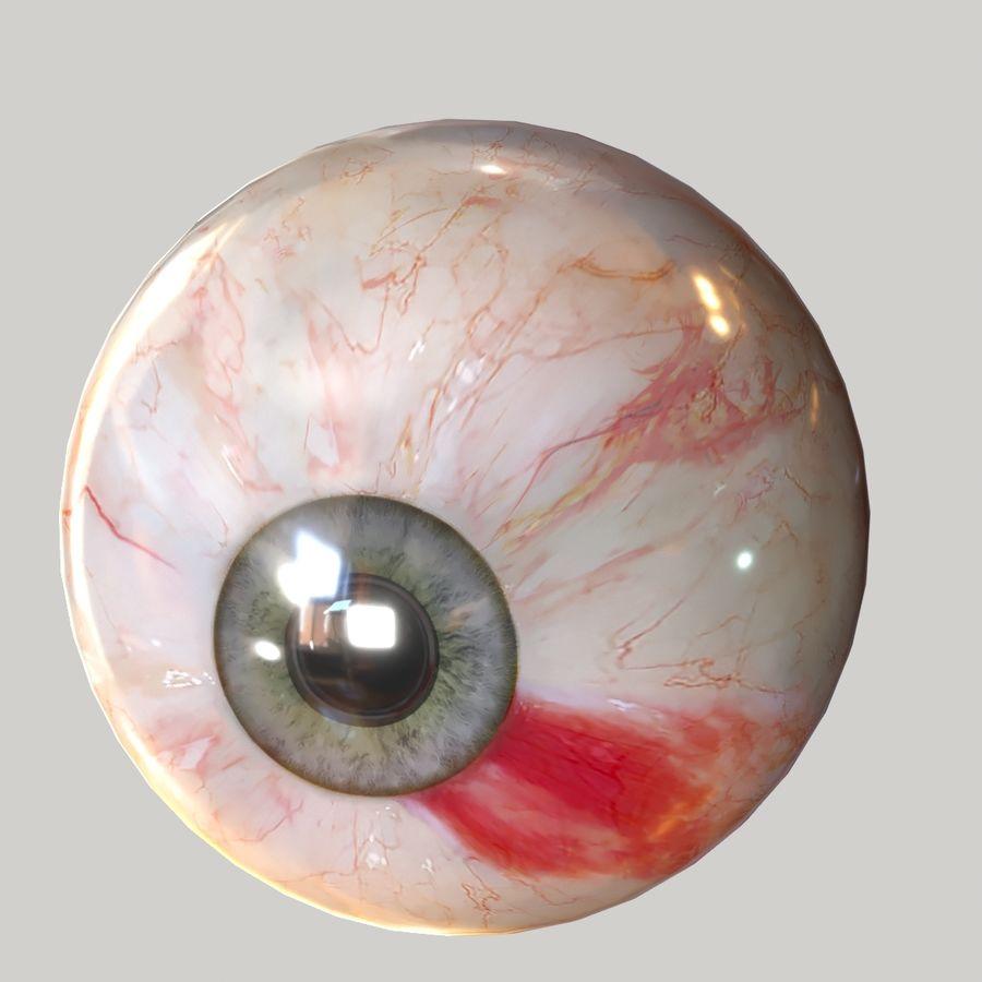 Realistic Human Eye Bundle royalty-free 3d model - Preview no. 12