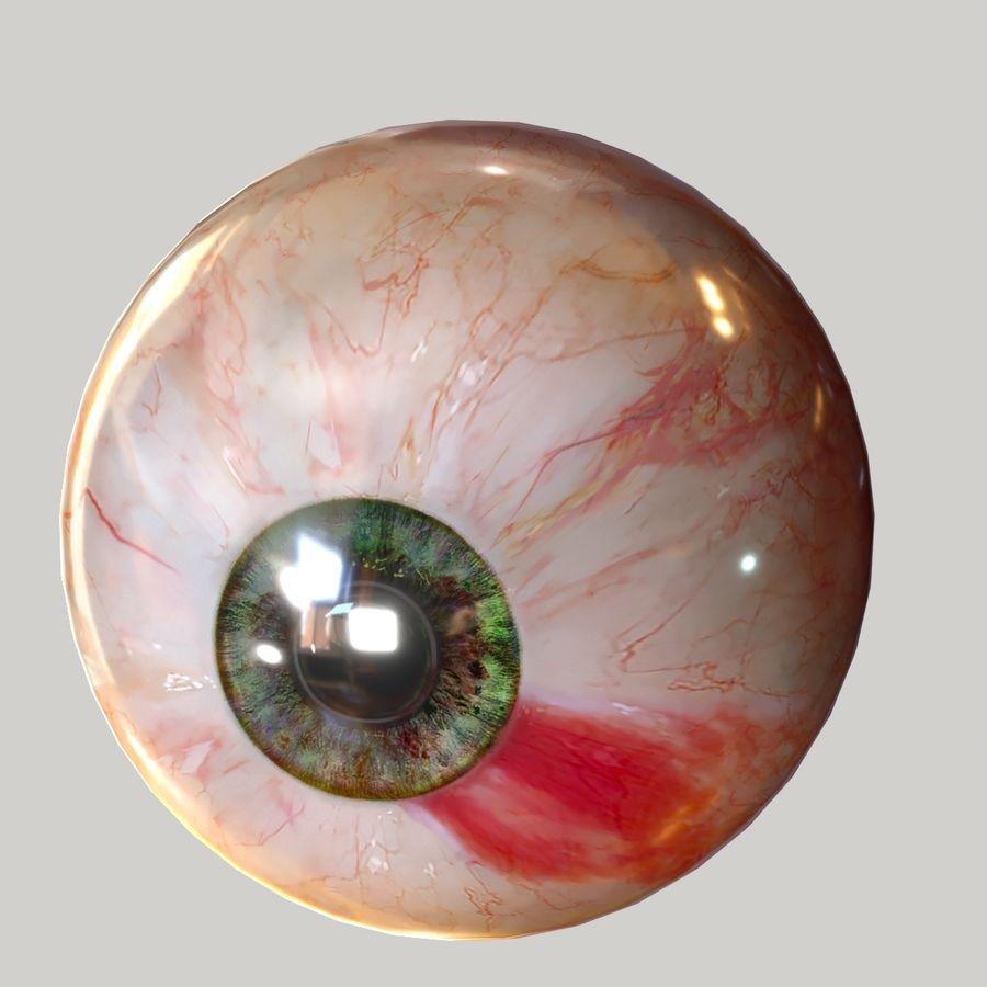 Realistic Human Eye Bundle royalty-free 3d model - Preview no. 17