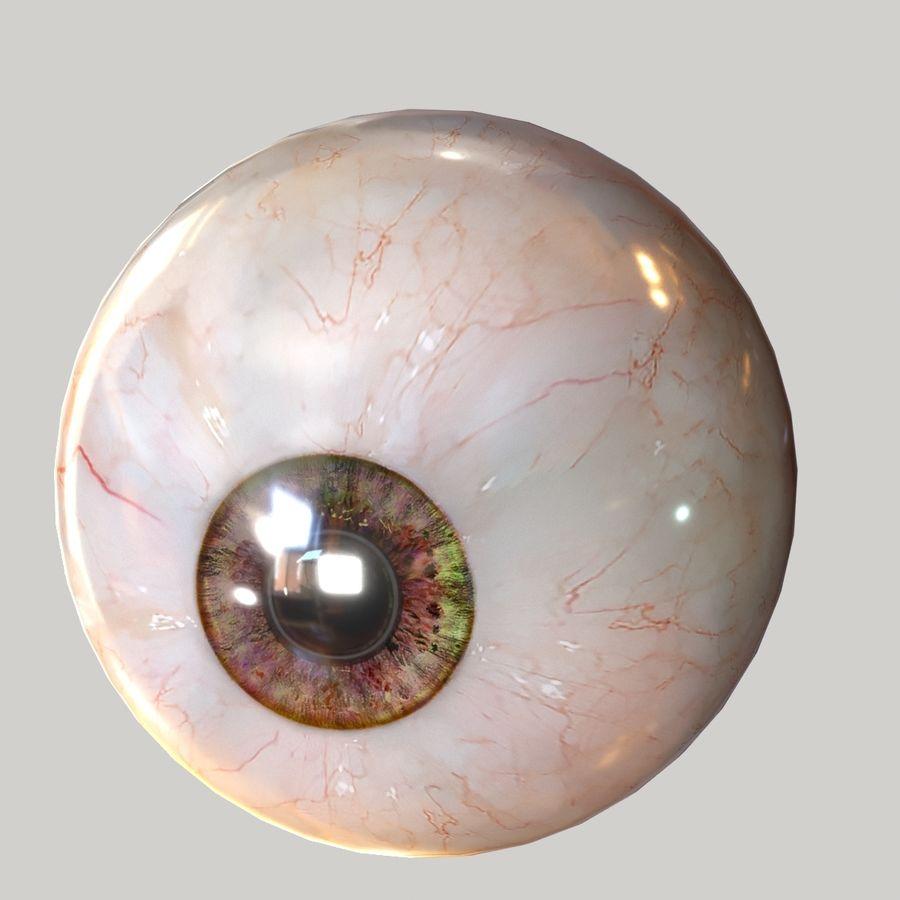 Realistic Human Eye Bundle royalty-free 3d model - Preview no. 22