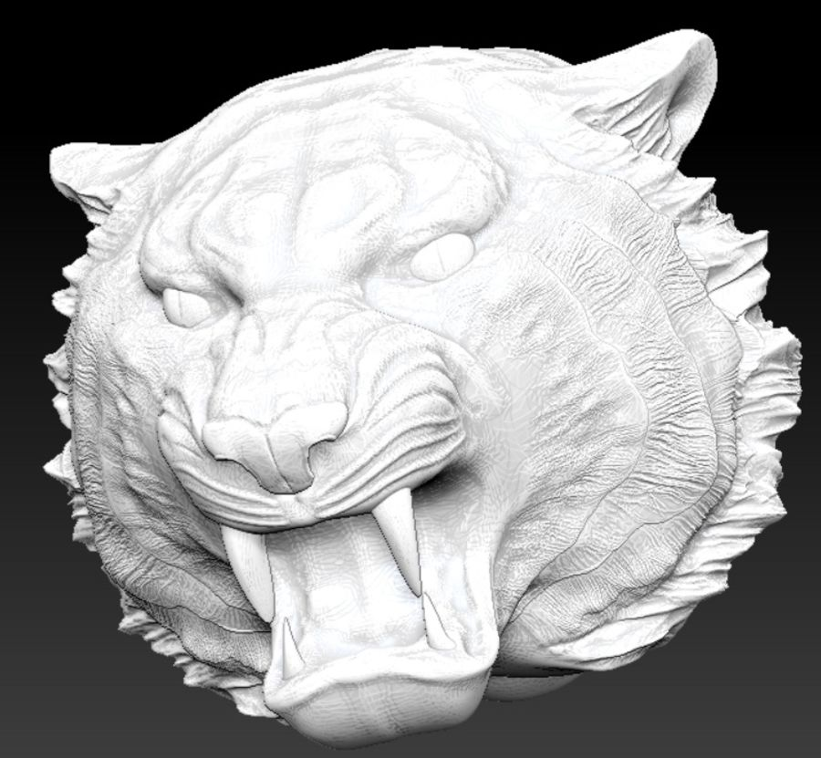 Tiger angry head royalty-free 3d model - Preview no. 1