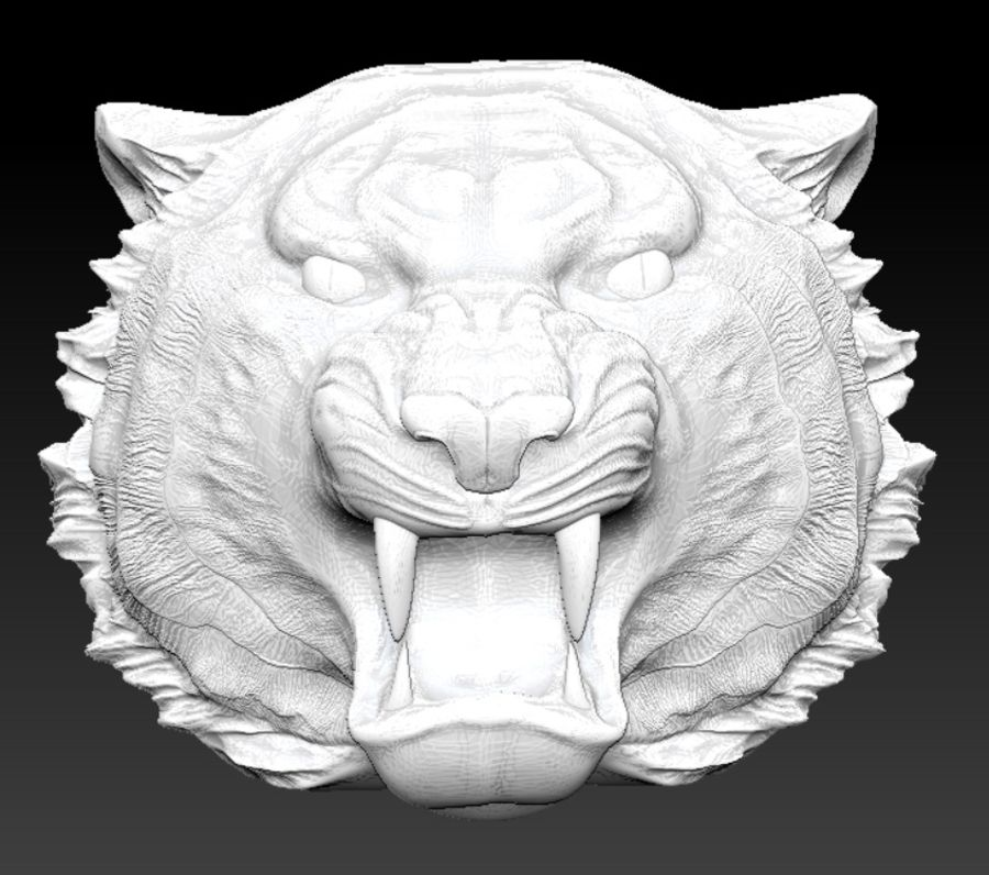 Tiger angry head royalty-free 3d model - Preview no. 3