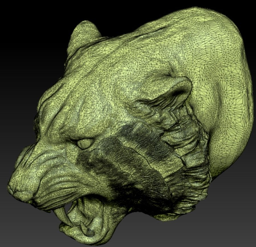 Tiger angry head royalty-free 3d model - Preview no. 4