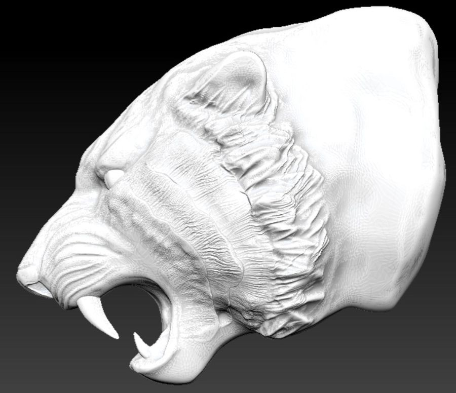 Tiger angry head royalty-free 3d model - Preview no. 5