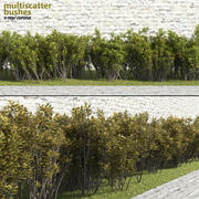 Multiscatter Bushes 3d model