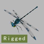 Libellule_Rigged 3d model