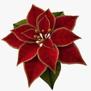 christmas flower 3d model