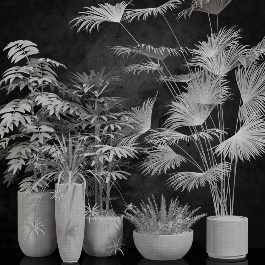 plantes d'intérieur royalty-free 3d model - Preview no. 4