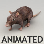 Rat animated model 3d model