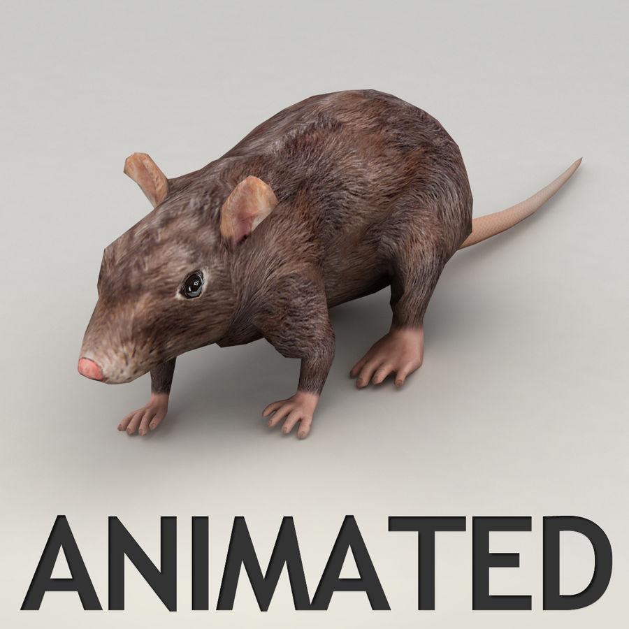 Rat animated model 3D Model $23 - .obj .max .fbx - Free3D